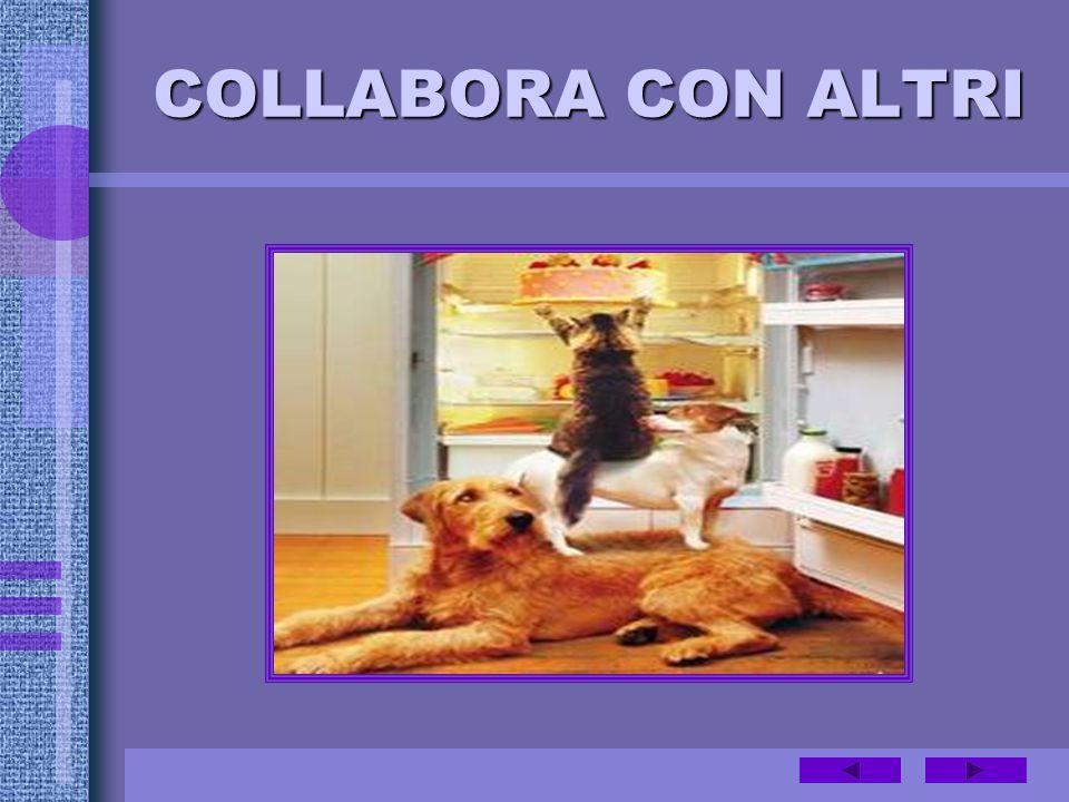 COLLABORA CON ALTRI
