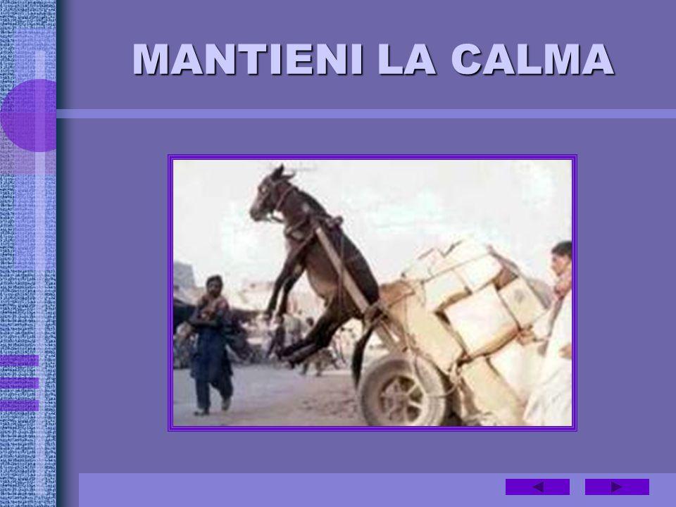 MANTIENI LA CALMA