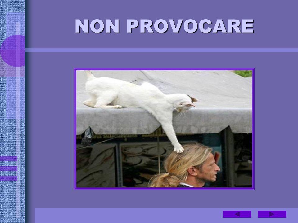 NON PROVOCARE