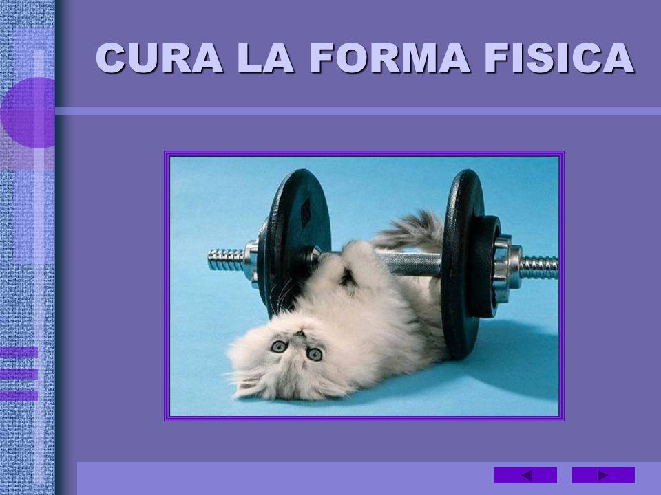 CURA LA FORMA FISICA