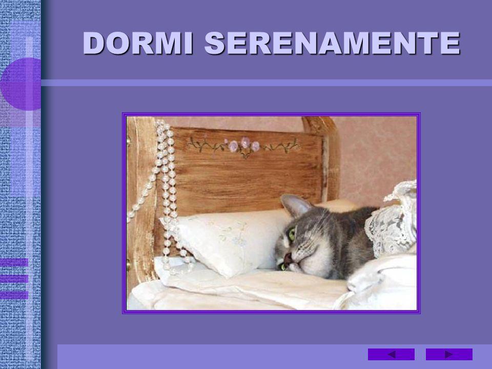 DORMI SERENAMENTE