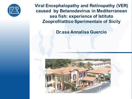 Viral Encephalopathy and Retinopathy (VER) caused by Betanodavirus in Mediterranean sea fish: experience of Istituto Zooprofilattico Sperimentale of Sicily.