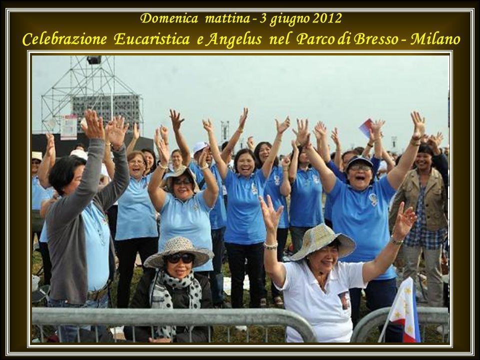 Domenica mattina - 3 giugno 2012 Celebrazione Eucaristica e Angelus nel Parco di Bresso - Milano
