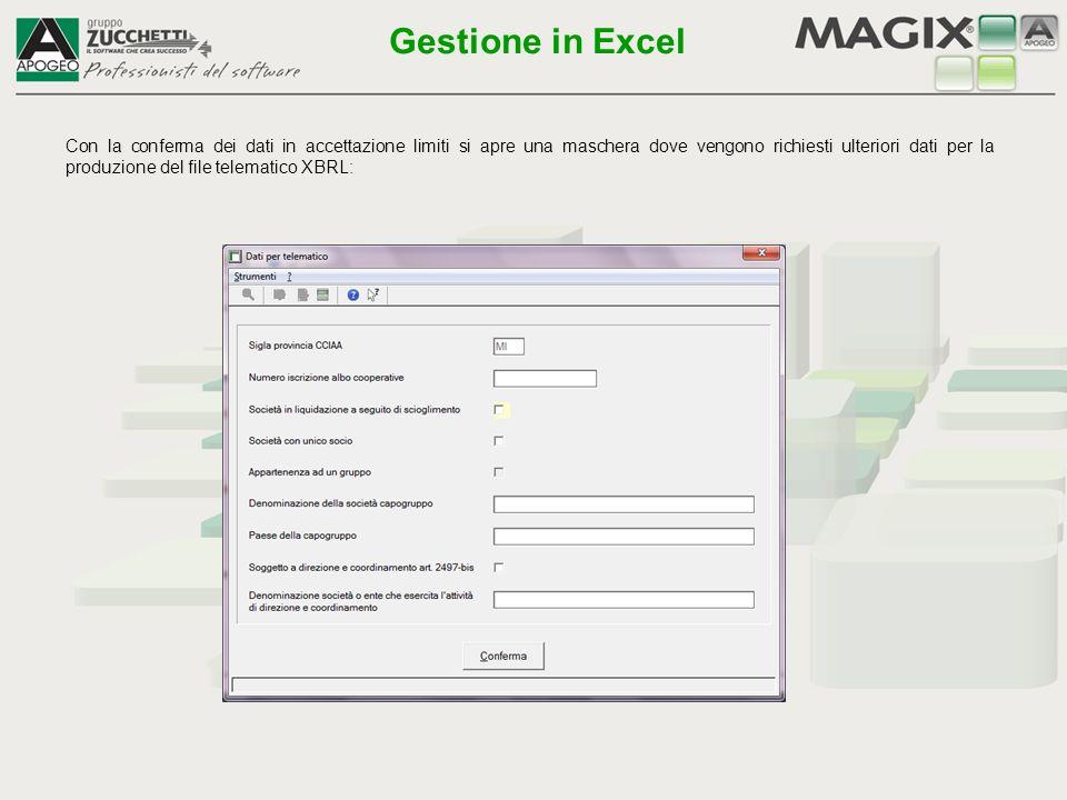 L'esportazione con nuovo bilancio apre il foglio di Excel, dove è necessario selezionare Acquisizione dati per aggiornare i dati contabili Gestione in Excel