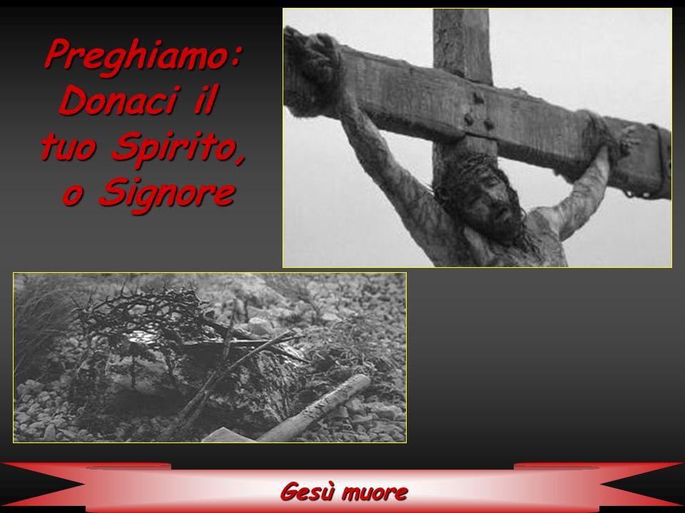 Gesù viene sepolto Preghiamo: Fatti sentire nel silenzio, o Signore