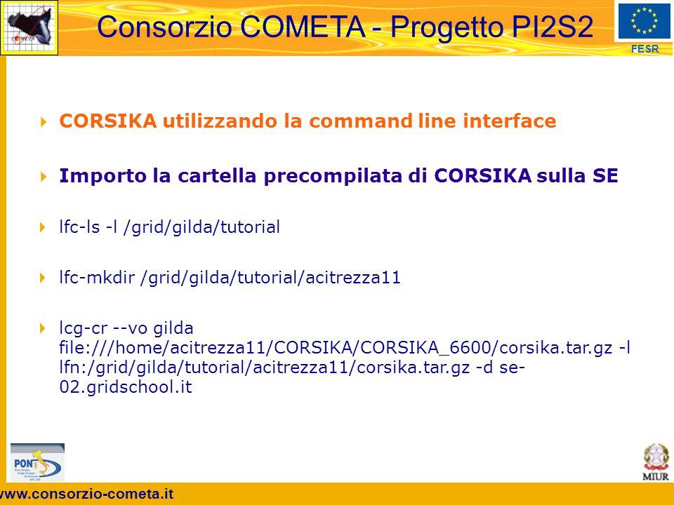 First International Grid School for Industrial Applications, Acitrezza (CT), 2th July 2007 4  corsika.sh  export LCG_GFAL_INFOSYS=rb-bdii-01.gridschool.it:2170  export LCG_CATALOG_TYPE=lfc  export LFC_HOST=lfc.gridschool.it  # trasferisci CORSIKA dalla SE al worker node  echo lcg-cp -v --vo gilda lfn:/grid/gilda/tutorial/acitrezza11/corsika.tar.gz file:$PWD/corsika.tar.gz  lcg-cp -v --vo gilda lfn:/grid/gilda/tutorial/acitrezza11/corsika.tar.gz file:$PWD/corsika.tar.gz  ls -l  # scompatta il tar.gz  echo tar -xvzf $PWD/corsika.tar.gz  tar -xvzf $PWD/corsika.tar.gz