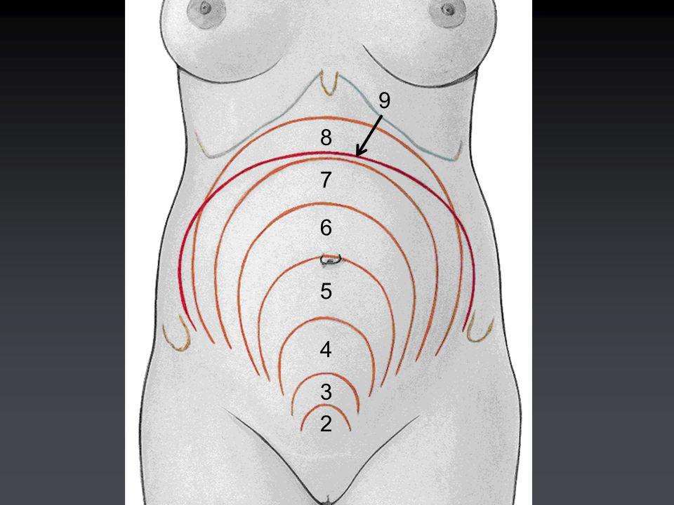 Corpo dell'utero e cervice