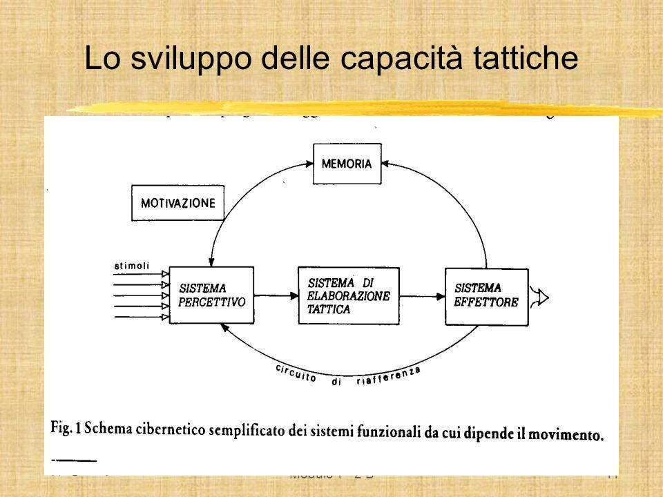 Modulo 1° 2 B12 Metodologia e Didattica Nellinsegnamento delle abilità tattiche occorre distinguere tra: variabilità dellesecuzione variabilità della situazione