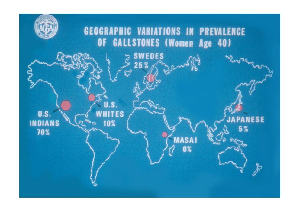 Gallstone Disease: Prevalence Studies PLACEYEAR AGE N° SUBJECTS Sirmione (I)1980 18-65 1930 Rome (I)198120-692320 MICOL (I)198630-6929739 Silea-TV (I)1999> 601065 Copenhagen (DK)198230-603608 Bergen (N)198320-701371 Maryland (USA)198320-742320 Okinawa (J)19840-752584 Maastricht (NL)198520-791055 Schwedt (D)198610-803226 Bristol (UK) 1991 25-691896 Ulm (D) 1996 18-651116