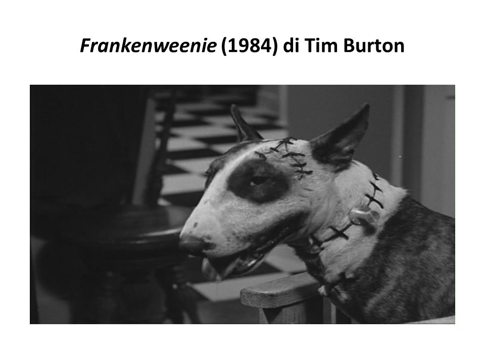 Frankenweenie (2012) di Tim Burton