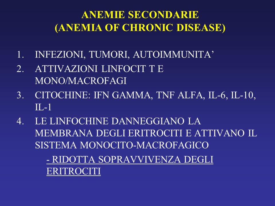 ANEMIE SECONDARIE (ANEMIA OF CHRONIC DISEASE) ERITROBLASTOGENESI RIDOTTAI ERITROCITOFORMAZIONE DIFETTIVAII SINTESI Hb RIDOTTAIII SOPRAVVIVENZA ERITROCITARIA RIDOTTAIV
