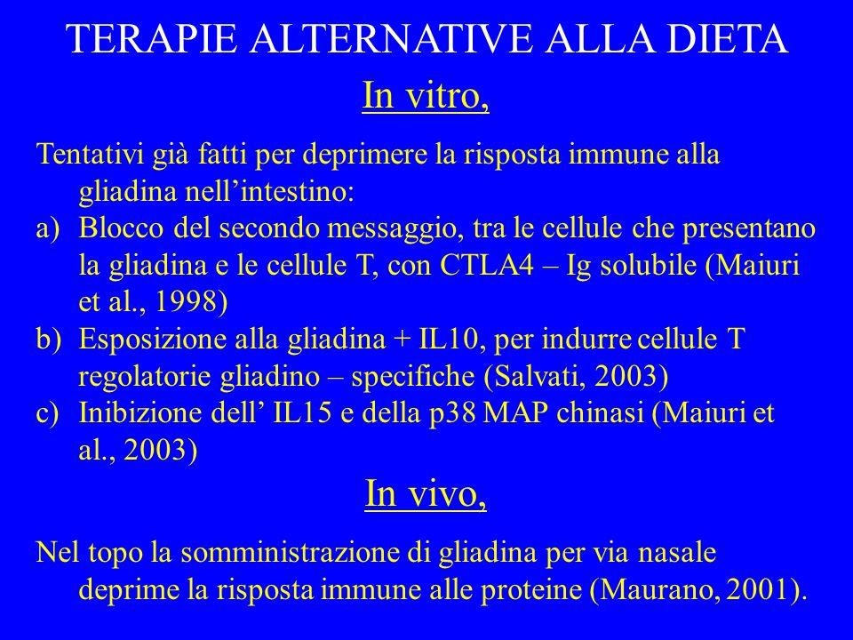 lume intestinale gliadina Th1 CD25 IL-2 IFN- APC HLA-DR ICAM-1 B7.1 Th1 infiammazione Tr IL-10 .