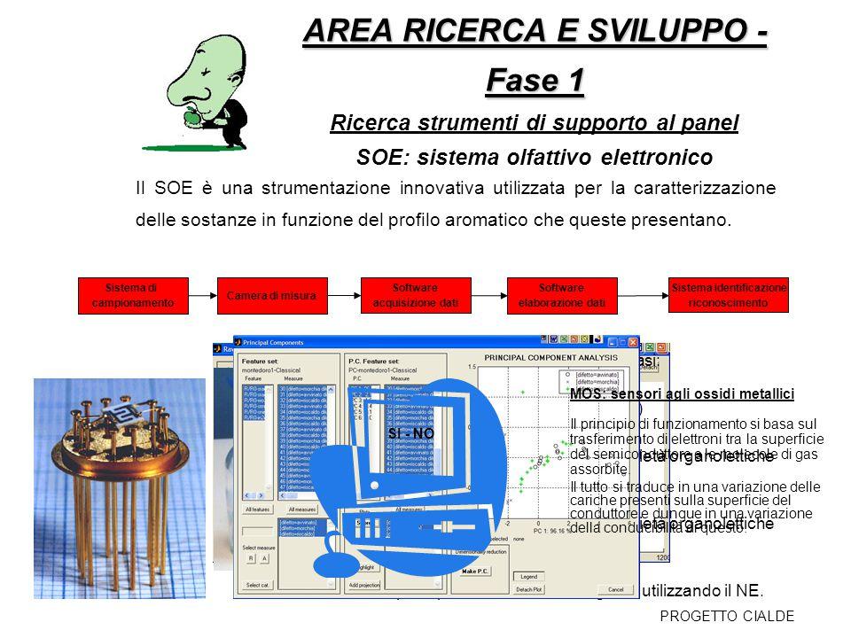 AREA RICERCA E SVILUPPO - Fase 1: AREA RICERCA E SVILUPPO - Fase 1: Stati di avanzamento dello studio del SOE La metodologia di analisi della bevanda è ancora in fase di ottimizzazione.