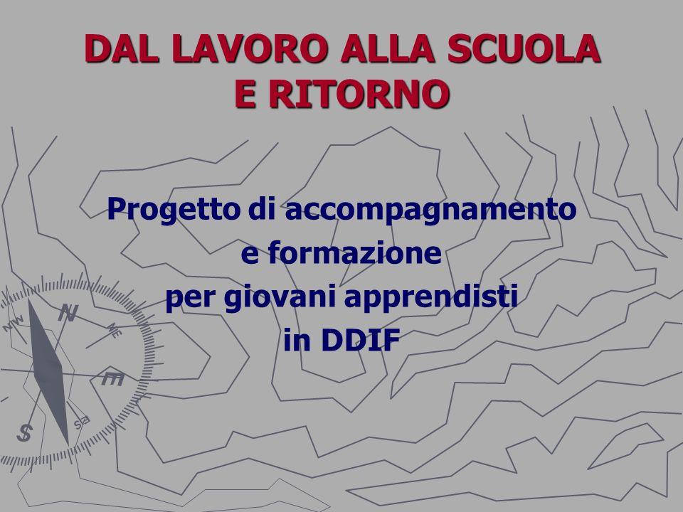 1^ FASE: LAVVIO DEL PROGETTO Il progetto ha preso il via nella.s.