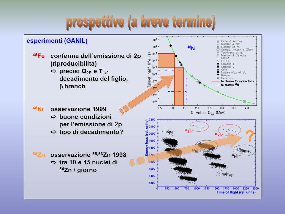 scopo misure di correlazioni angolari dei protoni emessi discriminazione tra emissione 2 He / altri casi sviluppo TPC impiantazione in una cella a gas tracking 3D dei protoni rivelatore X-Y Z time projection tecnologia MGWC (high energy physics) M.