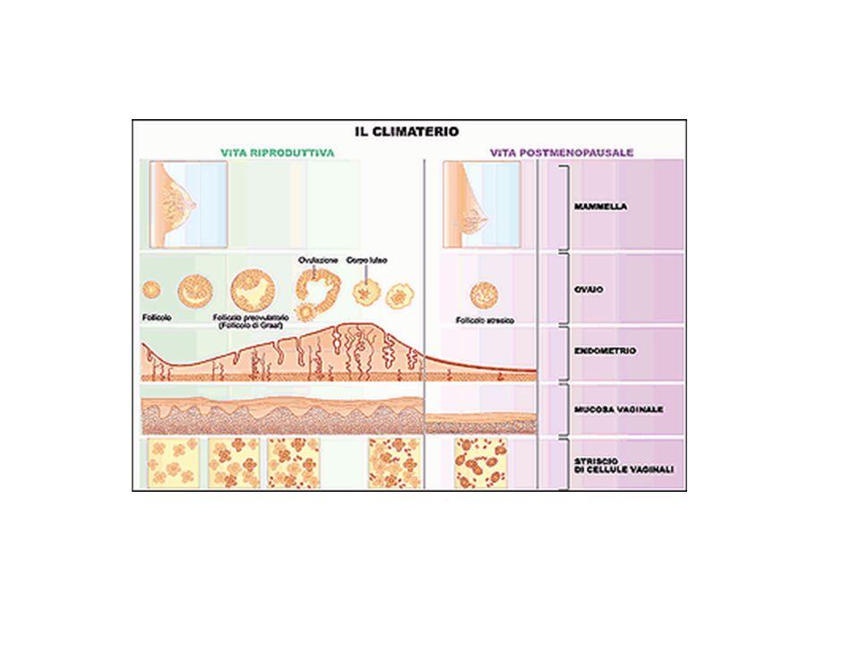 MENOPAUSA RISULTATO di una ALTERAZIONE FUNZIONALE CESSAZIONE DELLA FUNZIONE OVARICA età media 45-52 anni (in Italia 50.5 anni) Progetto menopausa italia study group