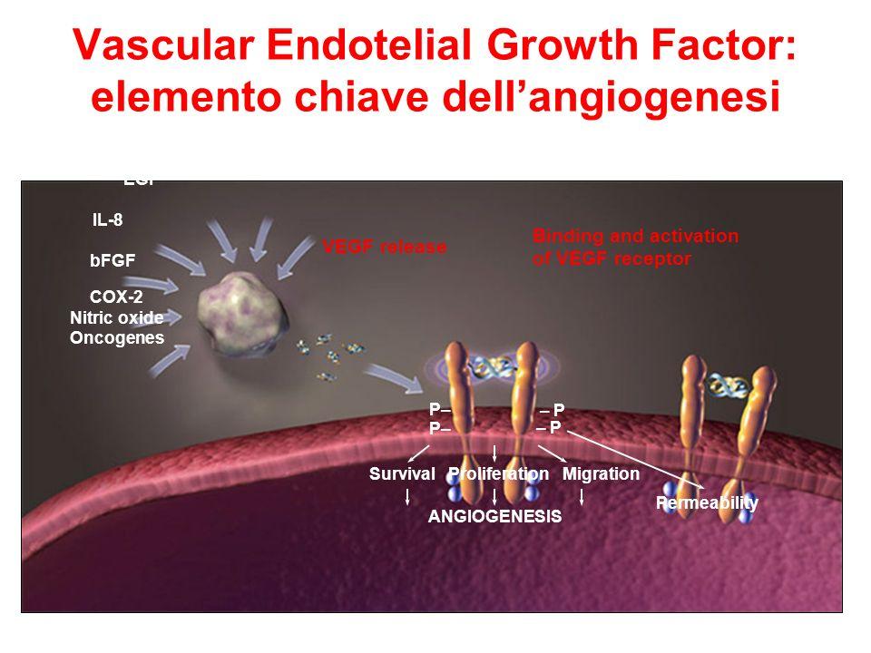 BEVACIZUMAB Anticorpo monoclonale con elevata affinità per VEGF-A.