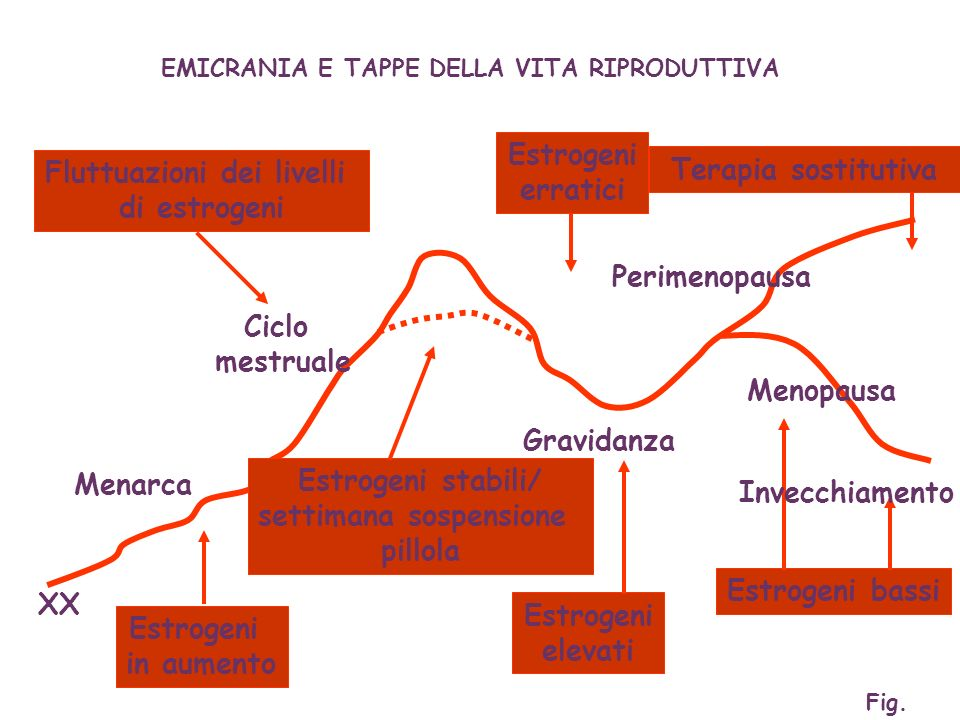 TRAIT Familiarity Dysnociception Personality / mood disorders Cardiovascular risk factors TRIGGERS Stressors Schedule shifts Geoclimatic changes Menstrual cycle Food MIGRAINE Ruolo di fattori psicologici in età infantile-adolescenziale