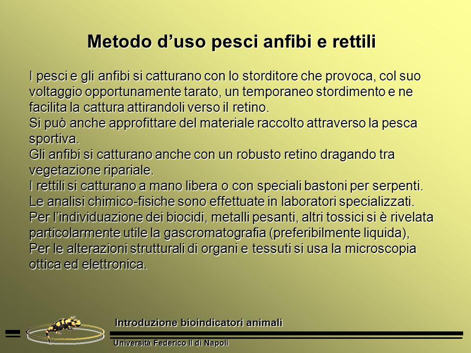 Università Federico II di Napoli Introduzione bioindicatori animali 1.Necessità di usare troppi di sistemi di cattura, il che richiede una competenza eccessivamente varia.