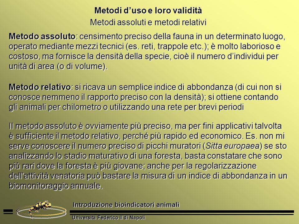 Università Federico II di Napoli Introduzione bioindicatori animali Metodi duso e loro validità Metodo della cattura e ricattura Gli animali sono catturati in una determinata area, marcati e rilasciati.