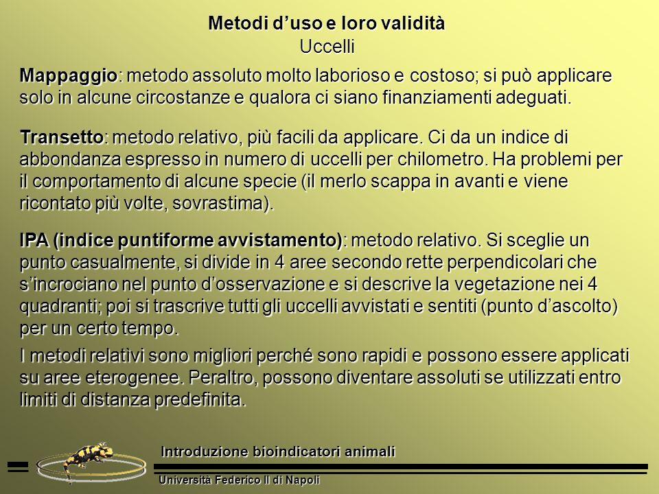 Università Federico II di Napoli Introduzione bioindicatori animali Metodi duso e loro validità Uccelli I rapaci sono più problematici da censire, perché hanno una densità bassissima.