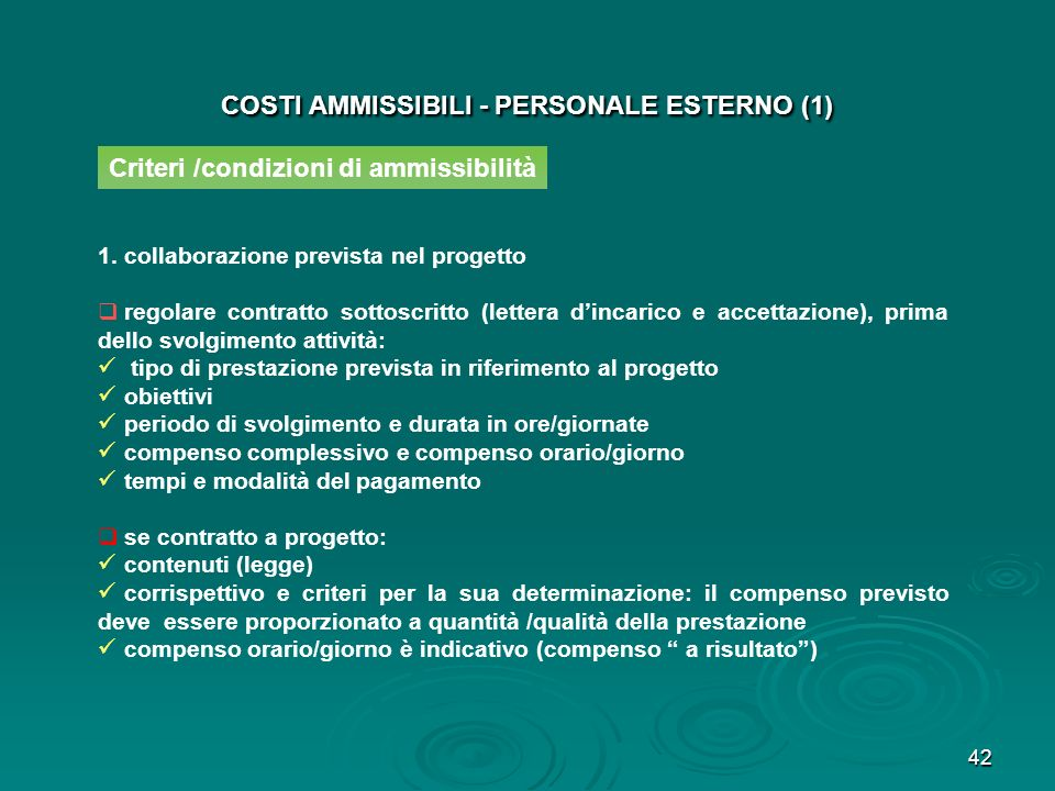 43 COSTI AMMISSIBILI - PERSONALE ESTERNO (2) 2.