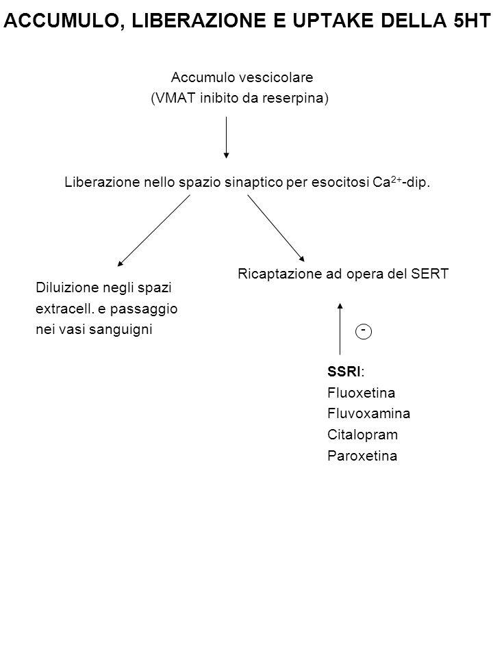 CLASSIFICAZIONE DEI RECETTORI SEROTONINERGICI 5-HT 1 (A, B, D, E, F) : Accoppiato a proteine G inibitorie (G 0/i ) => ↓Livelli intracellulari di cAMP 5-HT 2 (A, B, C) : Accoppiati a proteine Gq =>  PLC→ ↑[Ca 2+ ] i 5-HT 3 : Recettore-canale → determina depolarizzazione Struttura ~ nAChR neuronali (eteropentamero) Permeabile a Na +, K + (e Ca 2+ ) [AT 5HT 3 (ondansetron e granisetron) → Antiemetici] 5-HT 4,, 6, 7 : Accoppiati a proteine Gs => ↑cAMP 5-HT 5a : Accoppiati a proteine G i/0 => ↓ cAMP