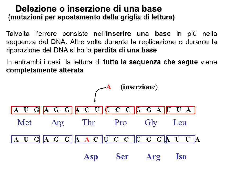 Mutazioni nella struttura dei cromosomi Esistono 4 tipi principali di mutazione della struttura dei cromosomi delezione duplicazione inversione traslocazione