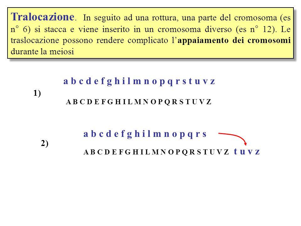 Mutazioni nel numero dei cromosomi (Aneuploidia) Monosomie e trisomie.