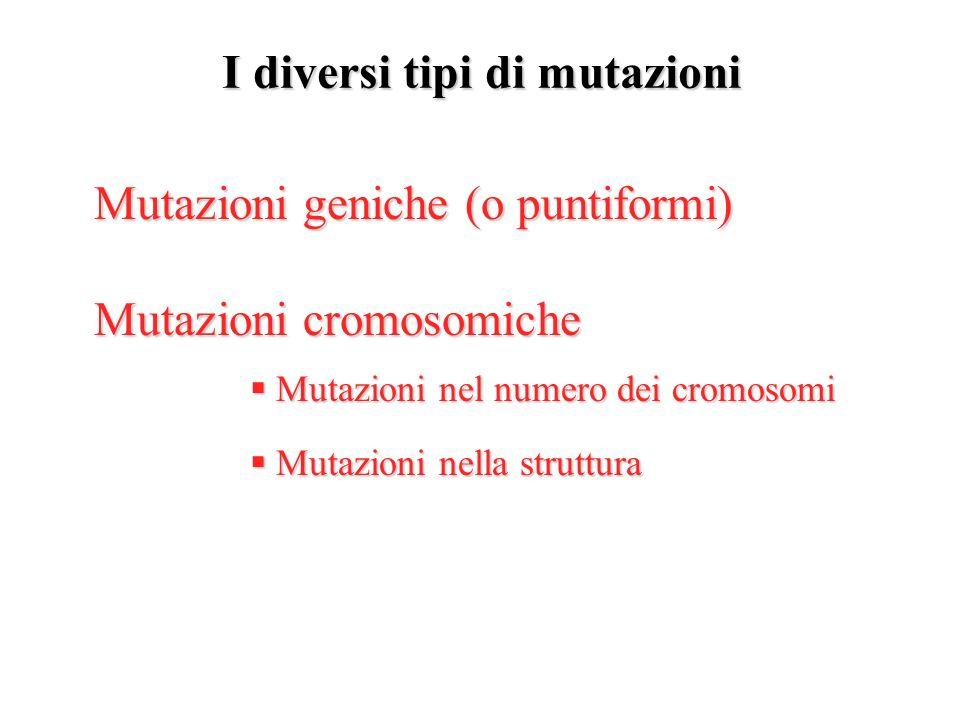 Mutazioni geniche Le mutazioni geniche o puntiformi sono dovute in gran parte alla sostituzione di una singola base nucleotidica del DNA con unaltra Altri tipi di mutazione si originano in seguito alla perdita (delezione) o alla inserzione di una base nel filamento del DNA Sostituzione Sostituzione Delezione Delezione Inserzione Inserzione