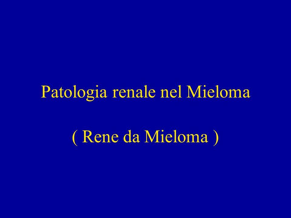 Patologia Renale nel Mieloma Condizione in cui la presenza di catene leggere di immunoglobuline monoclonali porta ad insufficienza renale acuta o cronica.