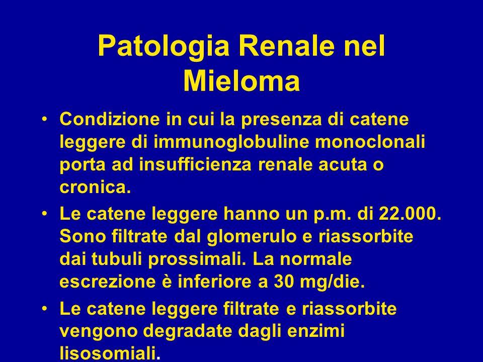 Patologia renale nel Mieloma Quando la capacità di riassorbimento e degradazione viene superata, catene leggere compaiono nelle urine.