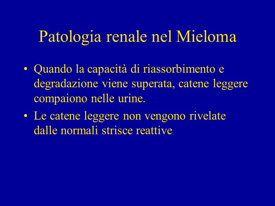 Patologia Renale nel Mieloma 1)Rene da Mieloma (Myeloma Cast Nephropathy) 2)Disfunzione tubulare 3)Amiloidosi 4) Malattia da deposizione di catene leggere (Randalls disease)
