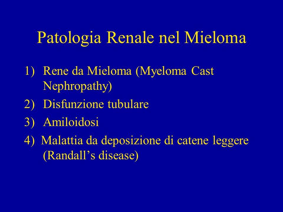 Patologia Renale nel Mieloma (1 - Myeloma Cast Nephropathy ) Più frequente lesione in pazienti con mieloma e più frequente causa di insufficienza renale Caratterizzata dalla presenza di cilindri tubulari associata a severe alterazioni dellepitelio tubulare I cilindri sono grandi e numerosi, prevalentemente nei tubuli distali e collettori, di aspetto rigido e fratturato, con policromasia alla colorazione tricromica ( Masson) I cilindri sono circondati da cellule mononucleate e da cellule giganti multinucleate, di origine macrofagica