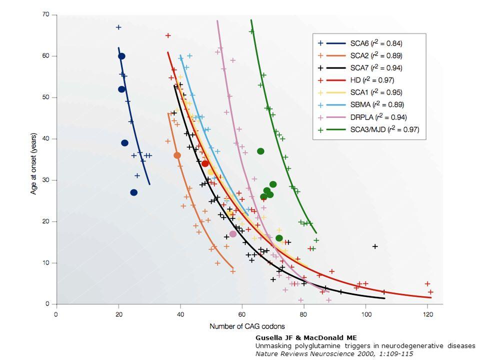Sequenze ricche in glutammina/aspartato (Q/N): -Sono presenti frequentemente negli eucarioti.