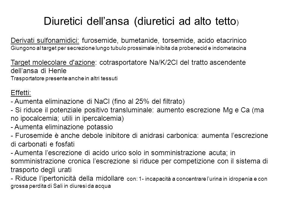 Diuretici dellansa Effetti emodinamici : A livello renale: Se il volume di sangue è mantenuto: 1- aumenta il flusso renale (effetto attenuato da FANS); 2- blocco del feed-back tubulo-glomerulo per inibizione del trasporto di Sali alivello della macula densa che provoca rilascio di renina A livello dei vasi: Aumento della capacità delle grosse vene e riduzione del precarico A livello dellorecchio interno : Alterazione dellendolinfa causa ototossicità