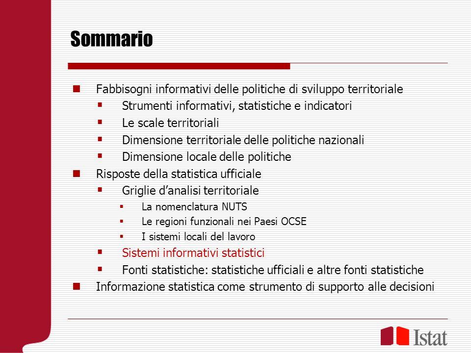 I sistemi informativi statistici Informativo, non informatico (il modo in cui sono organizzate le informazioni, non la tecnologia) Statistico (riferimento a un sistema specifico di meta- informazione) Integrato (integrazione di fonti diverse entro il sistema di meta-informazione, pluralità di ambiti duso)