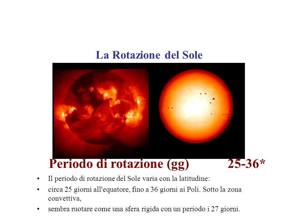 I Loop Coronali Strutture a forma di cappio osservate nella corona Solare.