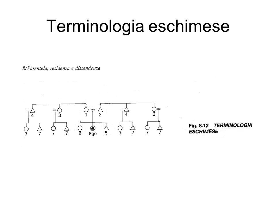 Terminologia hawaiana e terminologia irochese