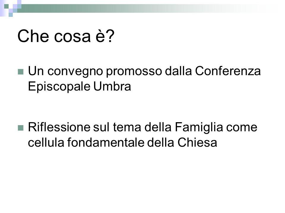 Perchè? Tema di grande attualità Problematica comune a tutta la Regione Umbria