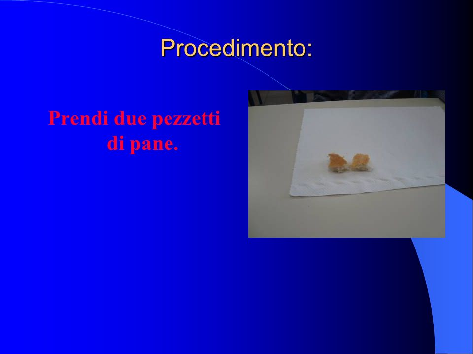 Bagna con il contagocce uno dei due pezzi di pane che assumerà un colore blu.