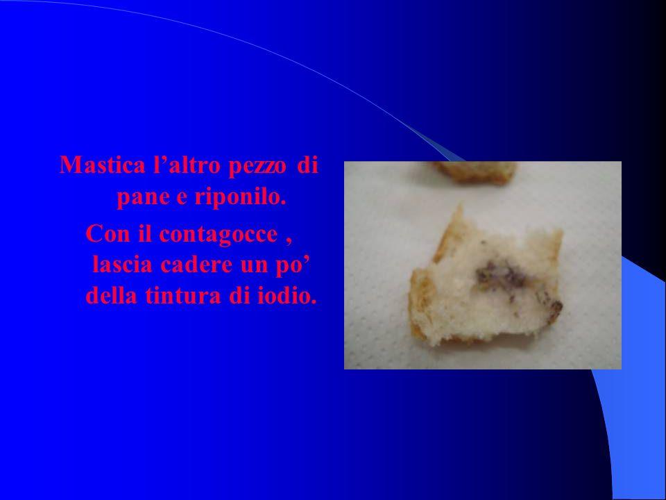 Fenomeni osservati: Il pane asciutto si tinge di blu scuro.
