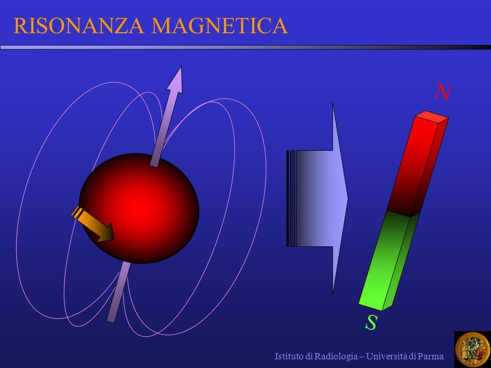 In natura i dipoli magnetici sono orientati a caso in tutte le direzioni: agitazione termica Immessi in forte campo magnetico omogeneo e costante nel tempo (CMS B 0 ): i vettori si allineano lungo le linee di forza del CMS