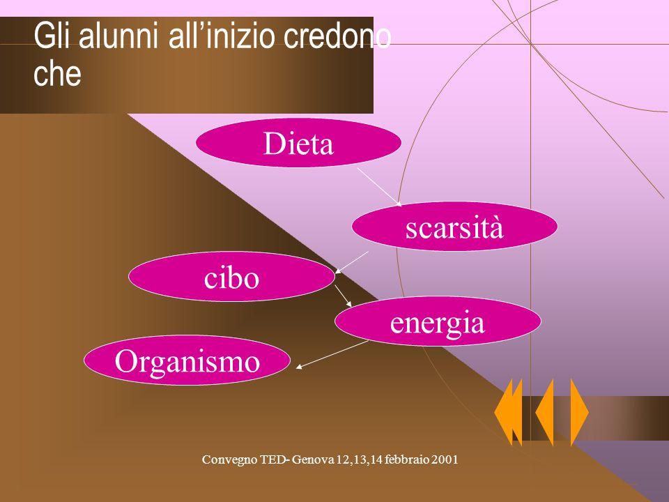Convegno TED- Genova 12,13,14 febbraio 2001 Gli alunni allinizio credono che Dieta scarsità cibo Organismo energia