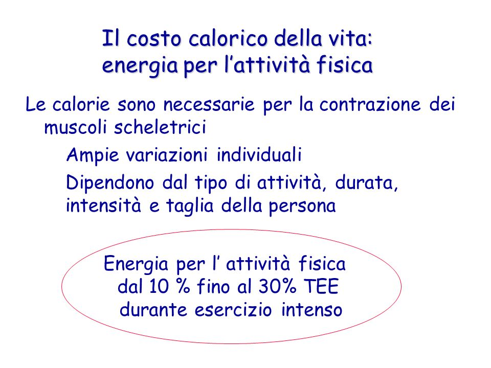 La percentuale di energia ottenuta dai substrati lipidici è maggiore quando il lavoro muscolare avviene a bassa intensità (50% VO2max) rispetto a quando l intensità è maggiore