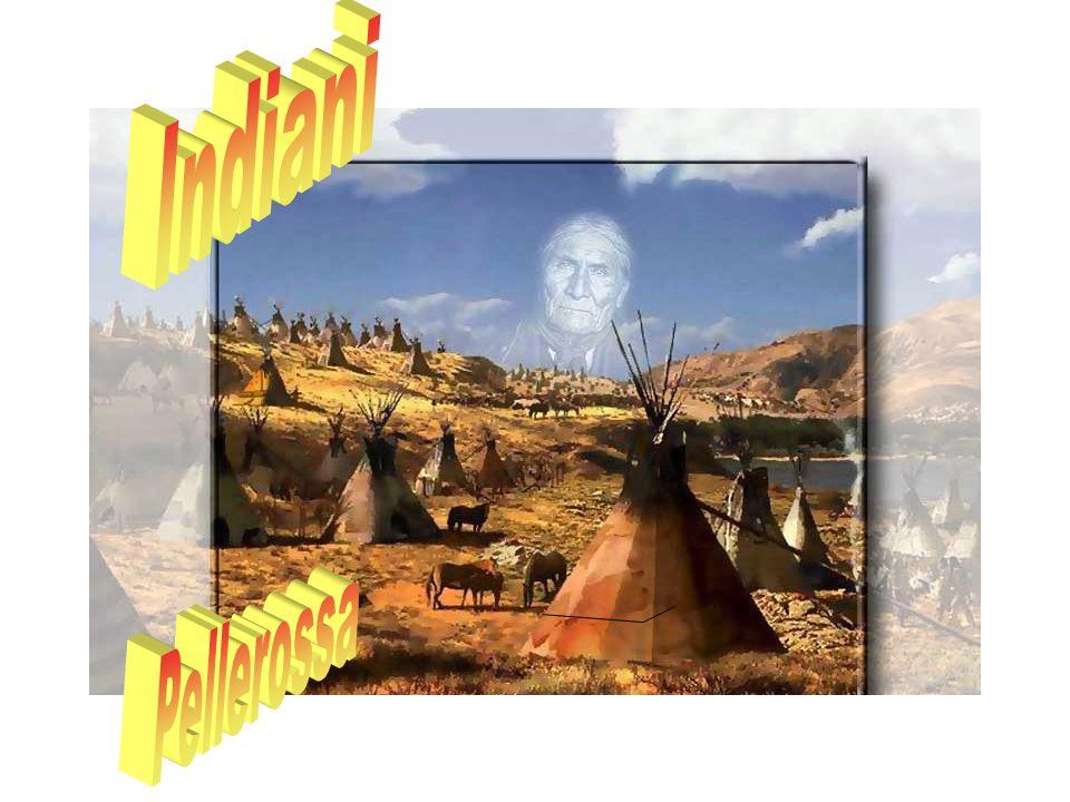 I Pellerossa erano divisi in circa 250 tribù, le più famose delle quali sono i Cheyenne, i Sioux, gli Apache, gli Irochesi e i Mohicani.