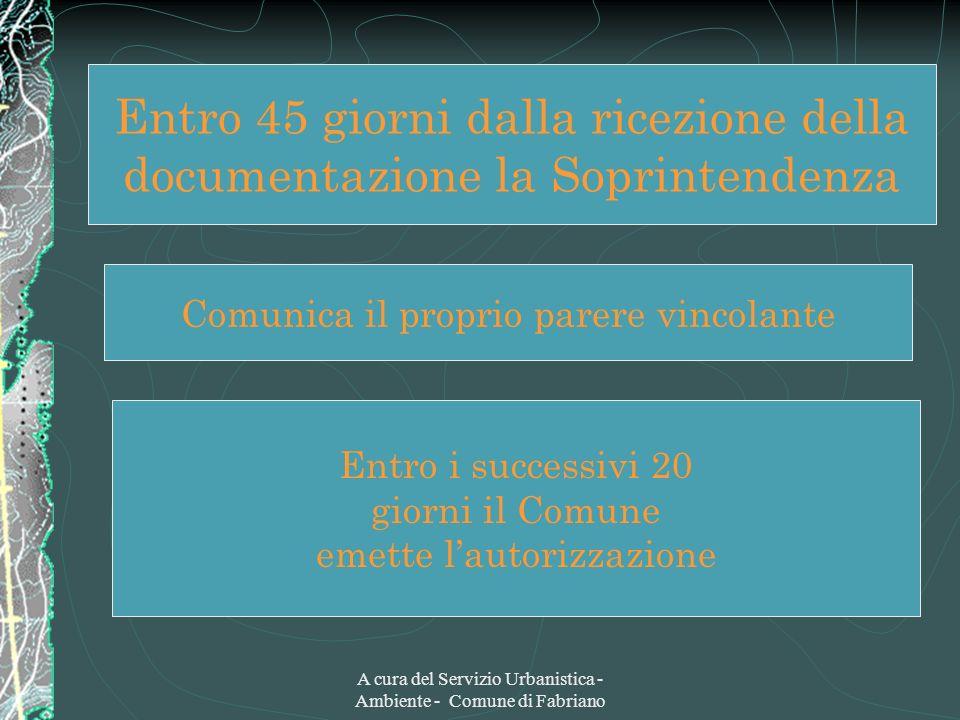 A cura del Servizio Urbanistica - Ambiente - Comune di Fabriano Non comunica il proprio parere Entro i successivi 15 giorni il Comune può indire la conferenza dei servizi.