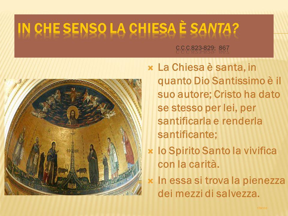 La santità è la vocazione di ogni suo membro e il fine di ogni sua attività.
