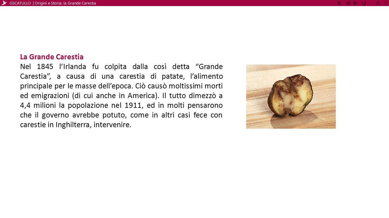 La patata Arrivata in Irlanda nel 1590 la patata viene vista dai contadini come un'ottima alternativa alle altre coltivazioni, occupando meno spazio e fornendo molti più elementi nutritivi.