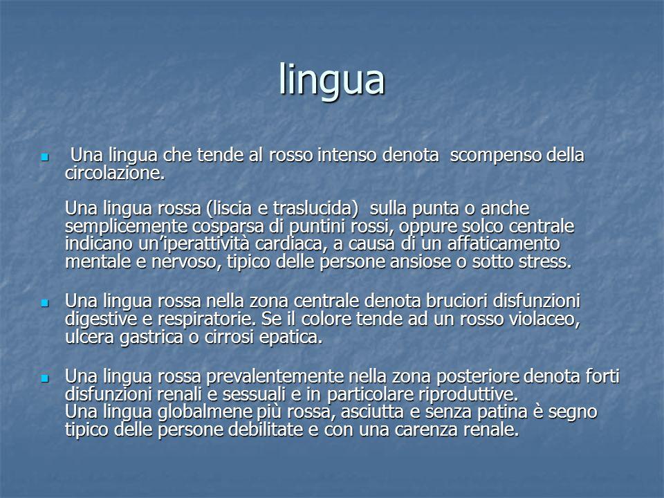 lingua Una lingua color bianco è sempre a causa di un eccesso di muco.